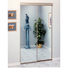 Erias 4050 Series 47 In. W. x 80-1/2 In. H. Mayan Gold Top Hung Mirrored Bypass Door Image 1