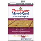 Thompsons WaterSeal Semi-Transparent Waterproofing Stain, Harvest Gold, 1 Gal. Image 1